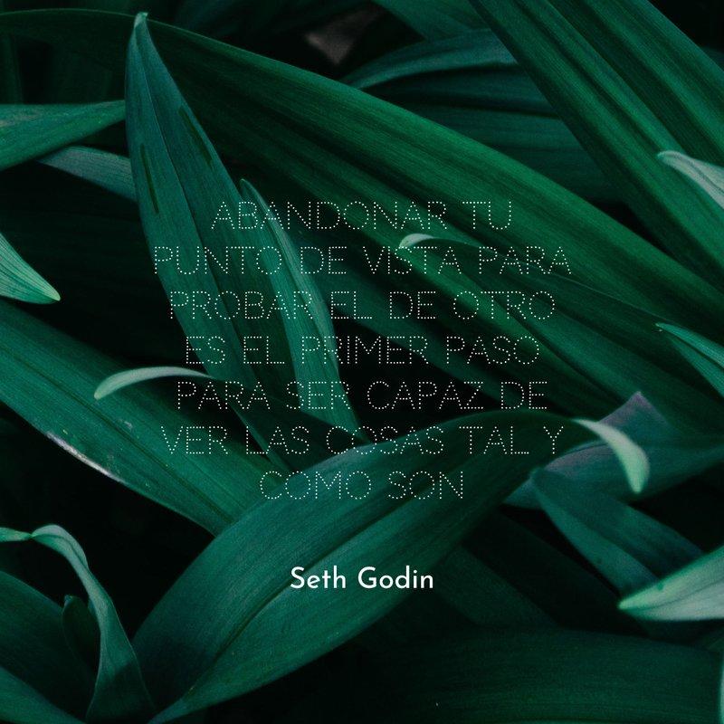 Seth Godin  frases para instagram