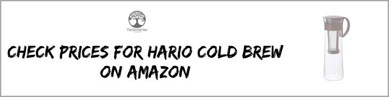 hario cold brew maker