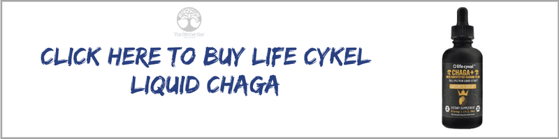 buy life cykel chaga mushroom