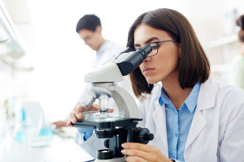 Scientist studying