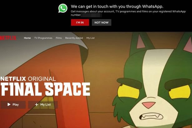 This is a picture of Netflix WhatsApp Notification Prompt. Read about the best whatsapp marketing company on our blog.