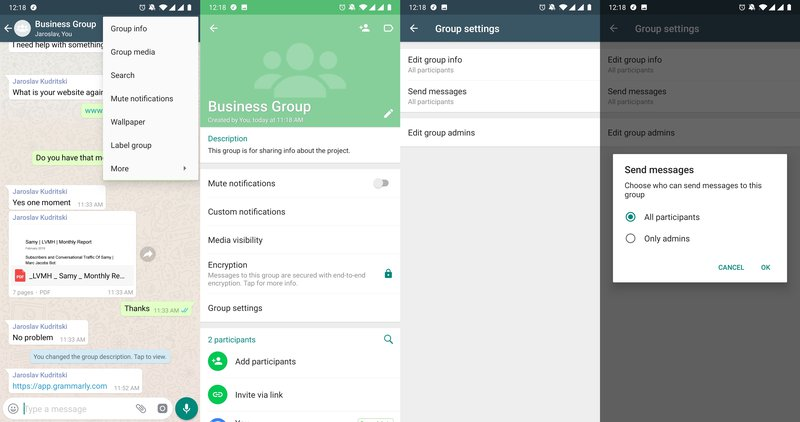 This is a picture showing how you stop participants from sending messages in the WhatsApp Group in the WhatsApp App