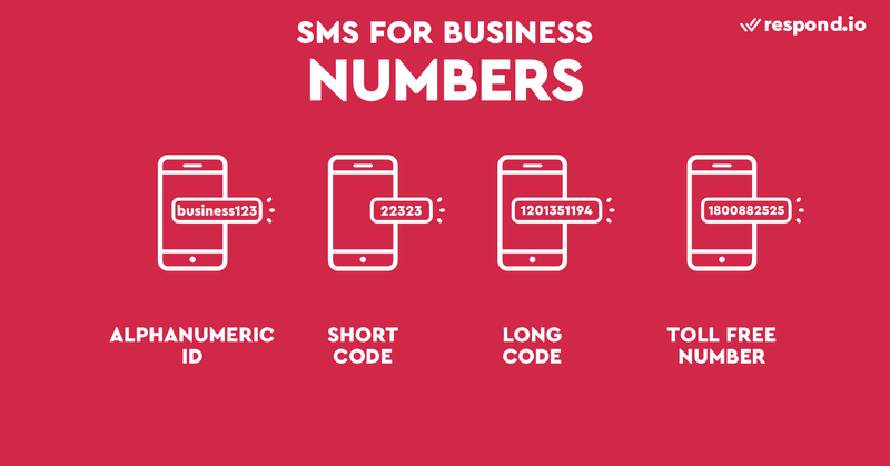 This is an image showing different types of SMS numbers. SMS numbers or SMS sender IDs are normally seen at the top of the chat. There are four main types of numbers, including alphanumeric ID, long code, toll-free numbers and short codes. Before you get started with business SMS, learn the differences between different SMS ID in our blog post.