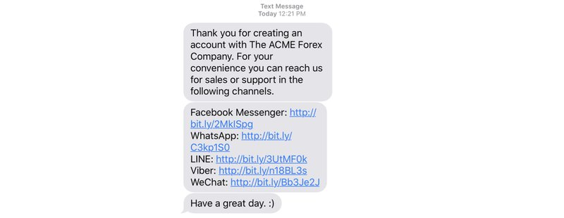 This is what a messaging app customer matching sms message could look like.