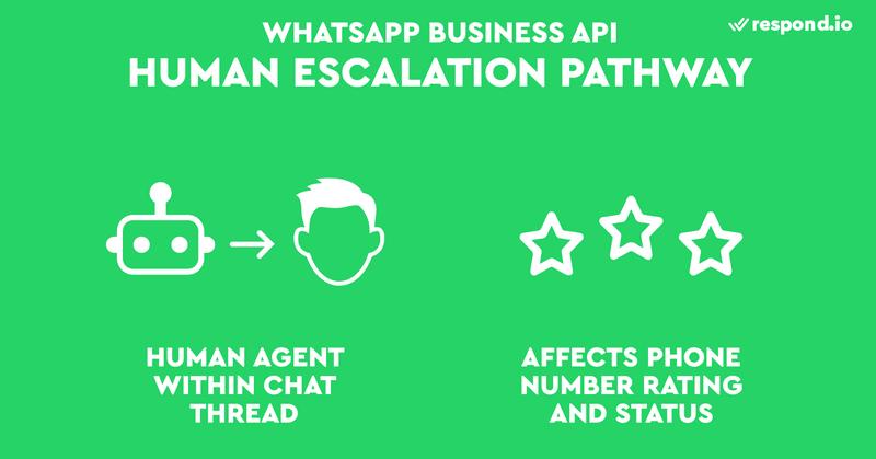 WhatsApp ha hecho obligatorio que las empresas incluyan un agente humano dentro de un hilo de chat. El hecho de no hacerlo afecta a la valoración y al estado de su número de teléfono.