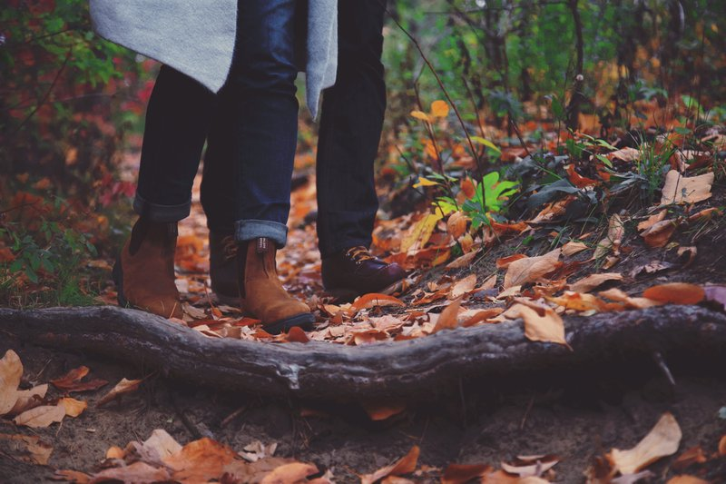 Months from their weddings day, a love so strong walks together through the mild fall in High Park (Toronto).