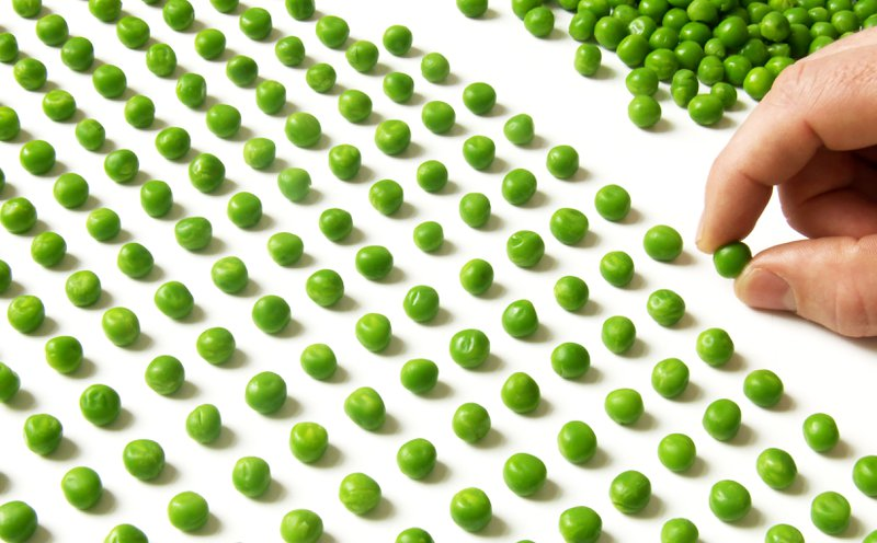 a lot of peas