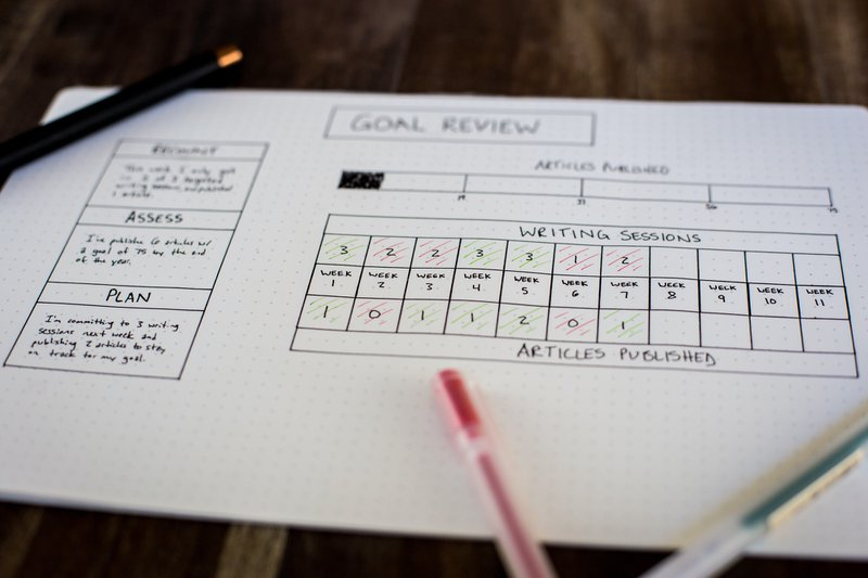 System for your Goals and project review