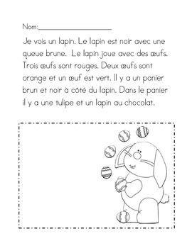 Frans leren, begrijpend lezen,