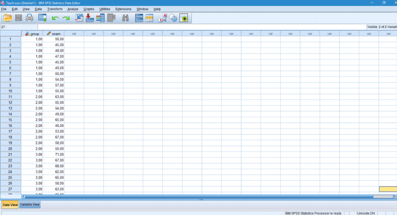 SPSS data view
