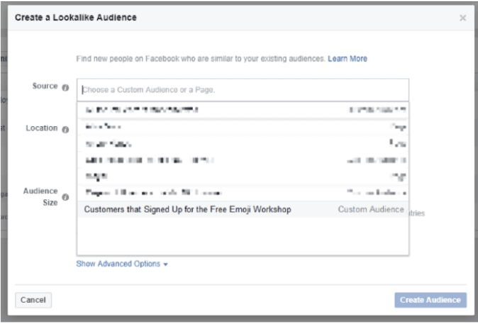 Entirely new Customer Audience: Facebook lookalike audience: helping you as digital marketing consultants
