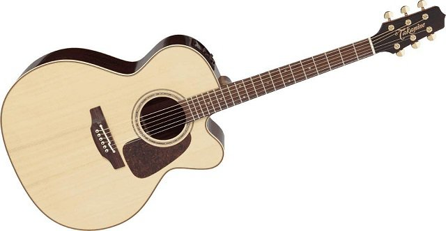 Best Acoustic Guitars Under 00 - Takamine Pro Series 5