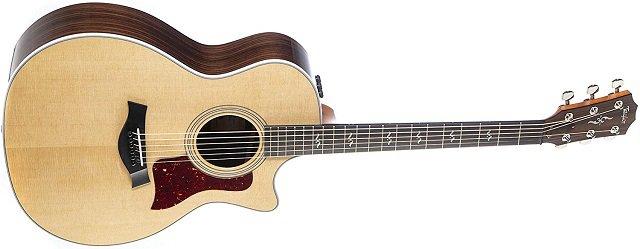Best High-End Acoustic Guitars Taylor 414ce-R