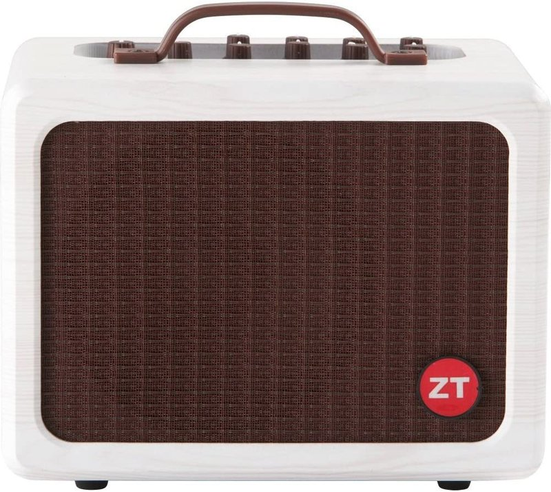 (Best small acoustic guitar amps)