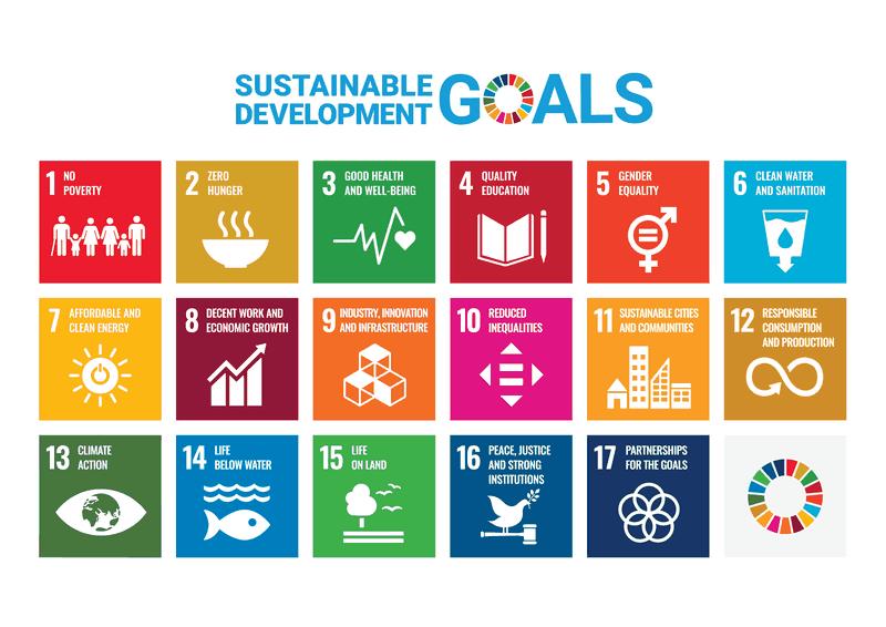 De 17 duurzame ontwikkelingsdoelstellingen (sustainable development goals of SDG's), opgesteld door de Verenigde Naties.