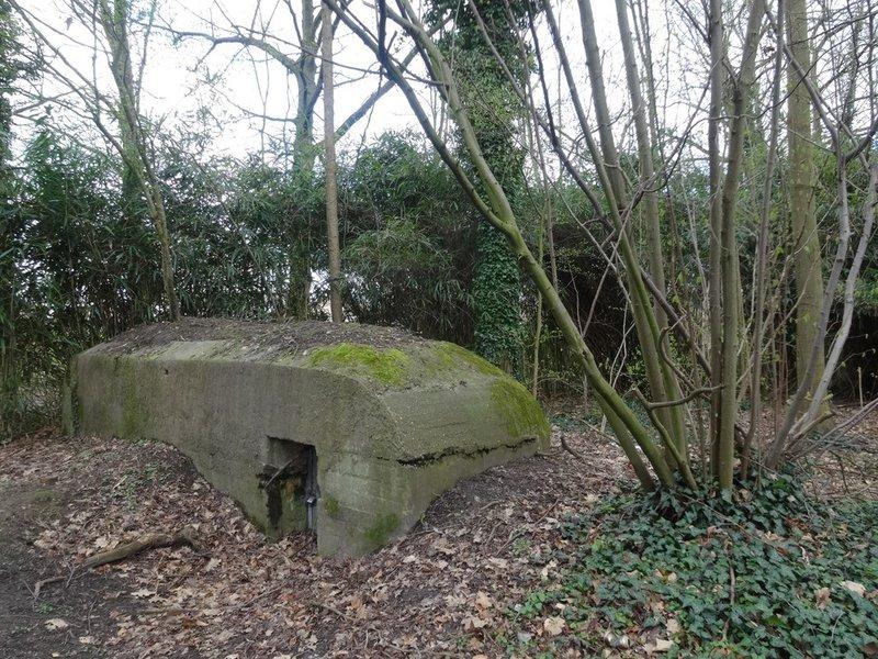 Bunkers in Blaasveld