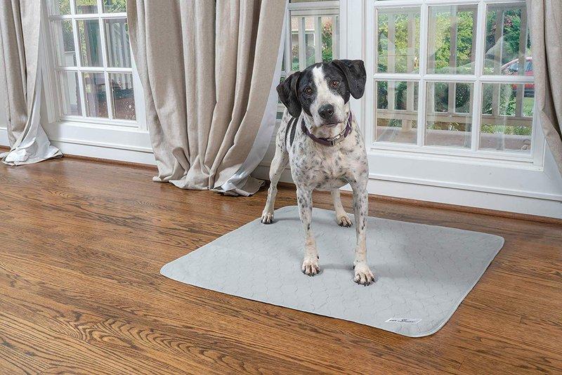 puppy pee pads