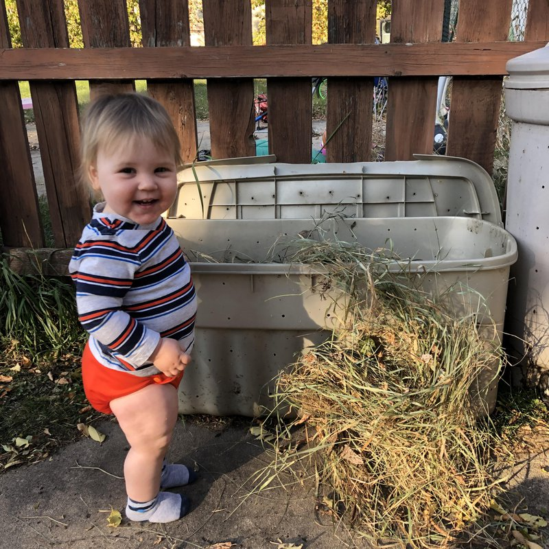 Toddler helps backyard compost diy