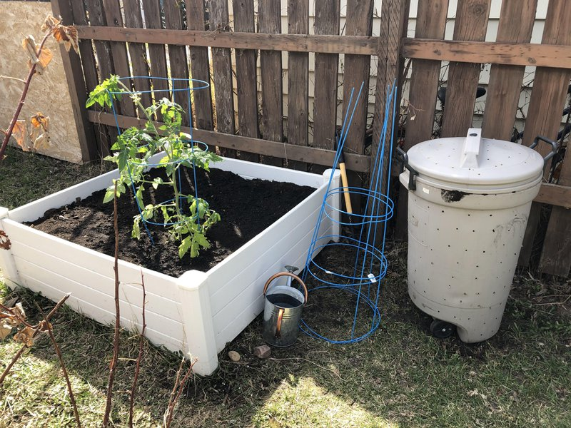 Backyard compost bin beside vegetable garden
