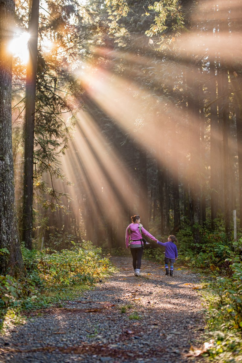 Sun rays beating down on mother and daughter walking in forest