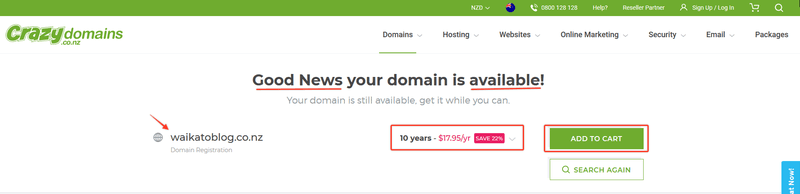 .nz domain names