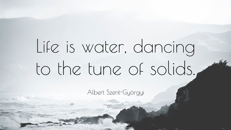 Albert Szent Gy rgyi Quote Life is water dancing to the tune of 177c5feaff9eff2fd7e85a23811b6a98 800