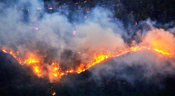 bushfires 9a9753b0c5dd0d4e199cc1e24906cc9f 800