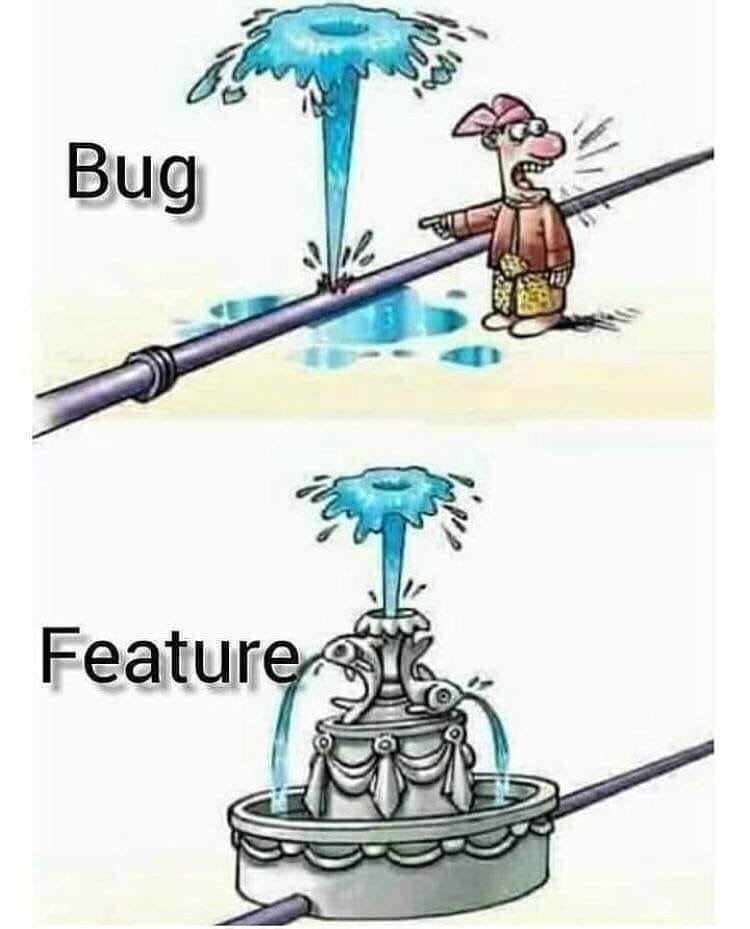 is it a bug or a feature? meme