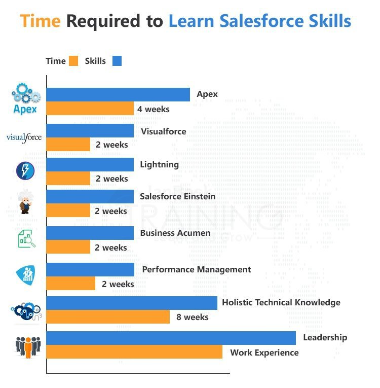 time it takes to learn salesforce skills