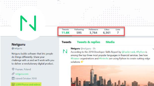 Netguru's Twitter account