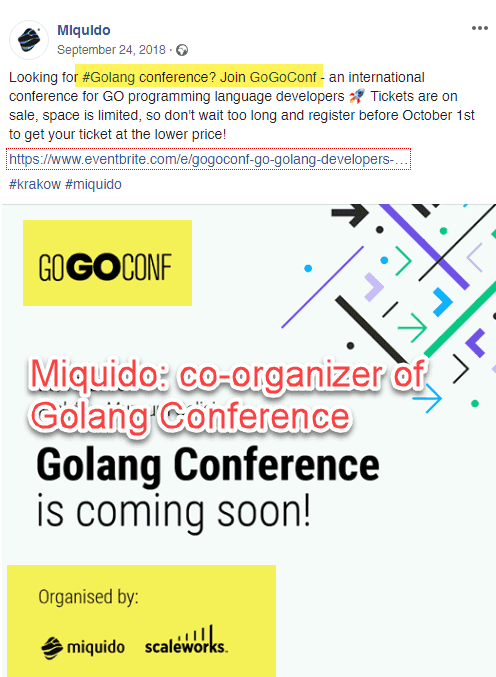 Co-organizers of Golang conferences