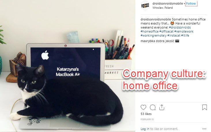 Company culture promoted on Instagram