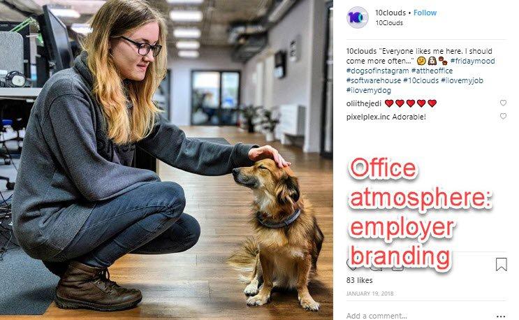 Building employer branding on Instagram