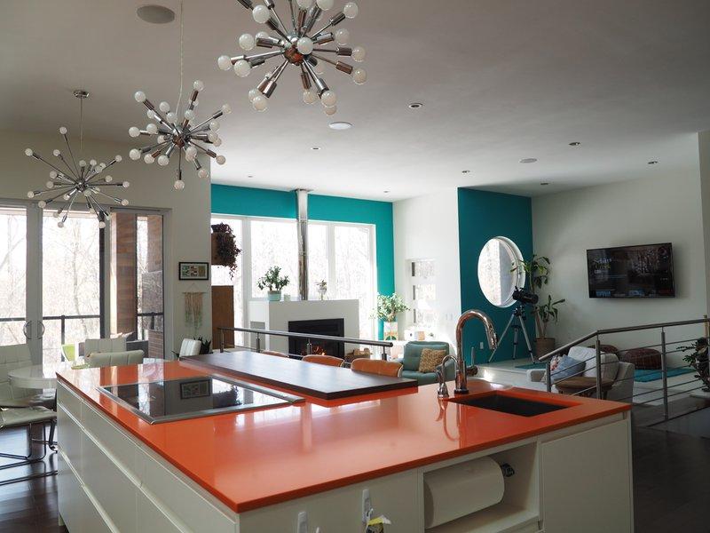 Mid century modern kitchen