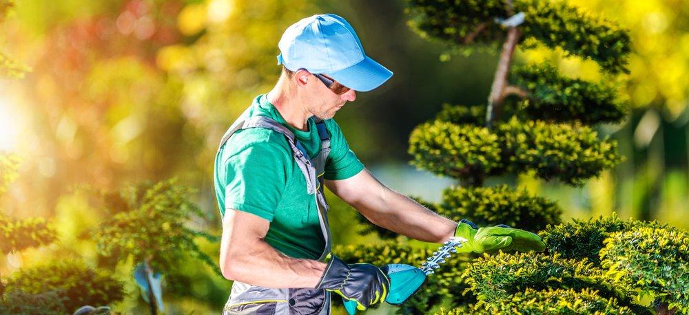 Gepensioneerden mogen maximaal 65 dagen seizoensarbeid verrichten - Konvert
