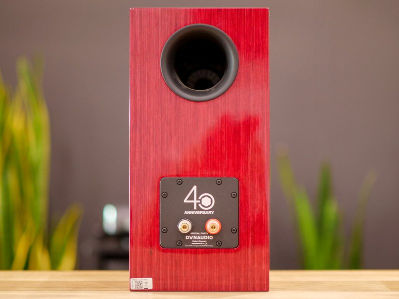 dynaudio special 40 terminals and bass port