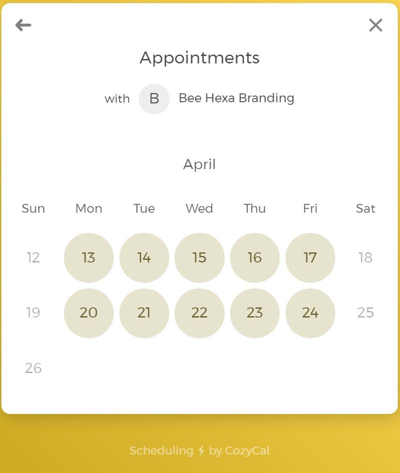 CozyCal appointments on your website