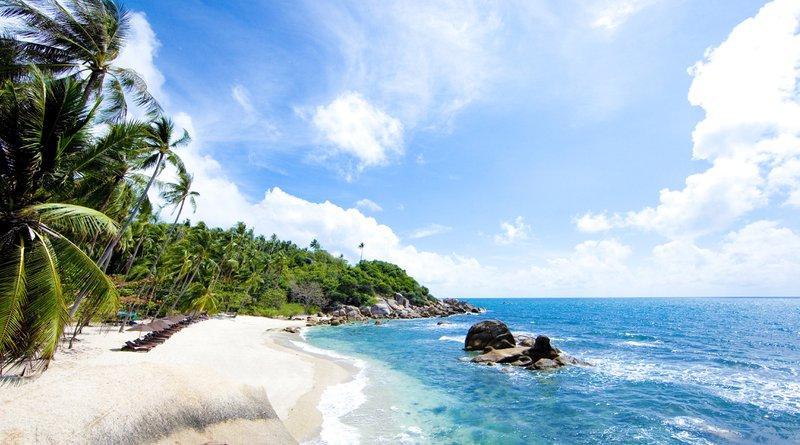 Thailand strand kokospalmen