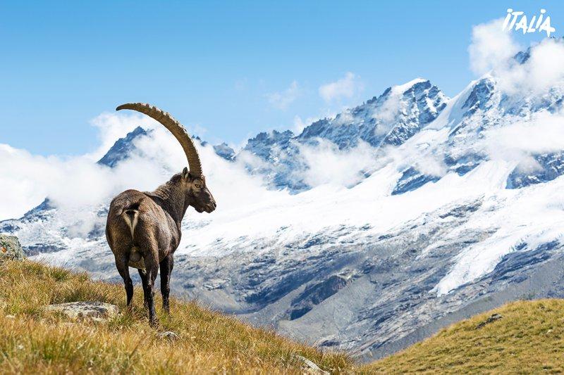 Val d'Aosta.