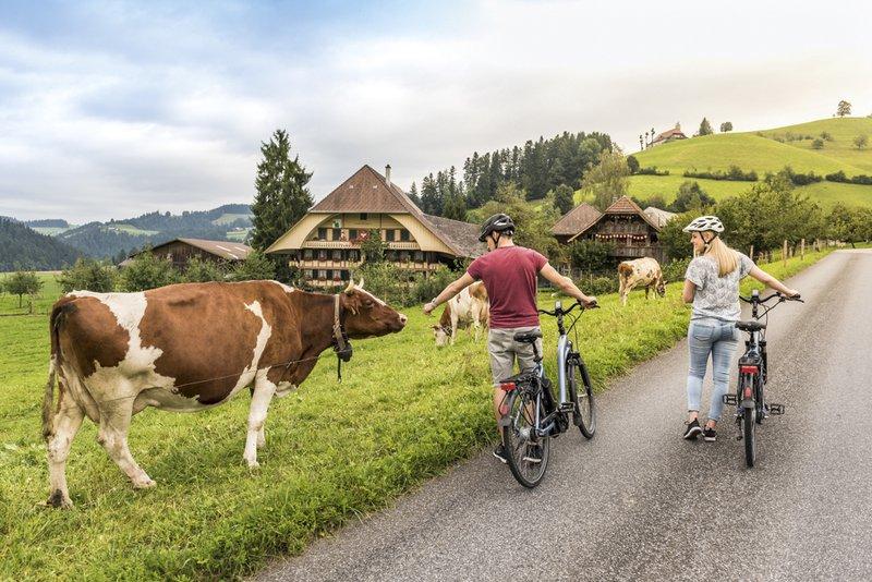Suisse et nature