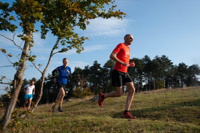 Ardenne course à pied trail