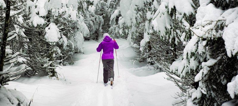 Vacances idées sport d'hiver